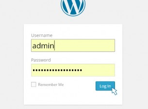 Log in to your WordPress Administration Panel